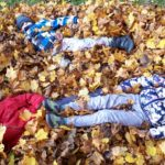 W jesiennych liściach